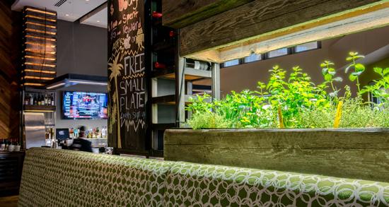 Sensational California Pizza Kitchen Trimark Robertclark Portfolio Beutiful Home Inspiration Truamahrainfo